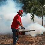 Insalud garantiza abordaje oportuno para casos de dengue
