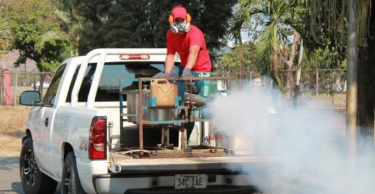 dengue insalud carabobo ameliach