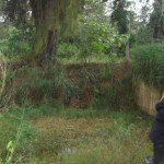 Protección Civil Carabobo monitorea  zonas vulnerables ante lluvias