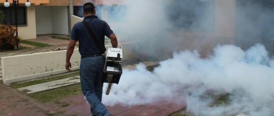 Gobernación extendió fumigación y abatización a otros cuatro municipios