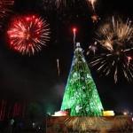 Carabobo dio bienvenida a la navidad con encendido del árbol en el Peñalver