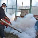 Casos de dengue en Carabobo disminuyeron 77,40% en 2016